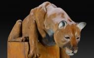 Cougar Front Close Up