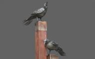 Rant of Ravens